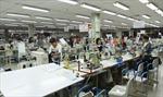 Các công ty bảo hiểm đánh giá thiệt hại tại Hà Tĩnh, Bình Dương