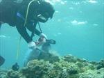 Cần đầu tư mạnh cho khoa học nghiên cứu về biển