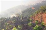Hơn 90 ha rừng tại Nghệ An bị thiêu trụi