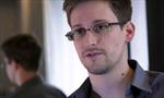 Snowden xin tỵ nạn tại Brazil