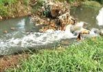 Bình Dương công khai 3.600 nguồn xả có nguy cơ gây ô nhiễm cao