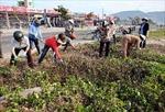 Tưng bừng ngày hội bảo vệ tài nguyên và môi trường biển đảo