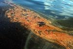 Tòa Tối cao Mỹ bác đơn khiếu nại của BP liên quan sự cố tràn dầu năm 2010