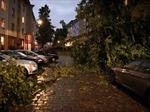 Đức: Giông lớn làm 6 người thiệt mạng