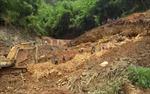 Bí thư Tỉnh ủy Đắk Nông chỉ đạo xử lý vụ xâm hại rừng Nam Nung