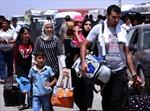 Iraq 'bật đèn xanh' cho Mỹ không kích phiến quân