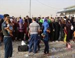 Gần 1 triệu người dân Iraq phải sơ tán