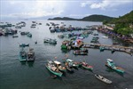 Chìm tàu tại Thanh Hóa, 8 ngư dân được cứu thoát