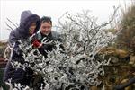 Xây dựng thương hiệu du lịch cho xứ Lạng
