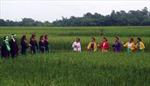 Về Đông Loan - Bắc Giang nghe 'nói tức'