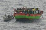 Phát hiện 30 xác chết trên tàu chở người tị nạn tới Italy