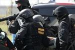 Cảnh sát Italy liên tục thu giữ lượng lớn ma túy
