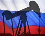 Nga ngày càng phụ thuộc vào xuất khẩu dầu mỏ
