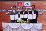 Hắc sâm Geumheuk có mặt tại thị trường Việt