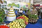 Thu hút nguồn vốn FDI vào ngành, sản phẩm chủ lực