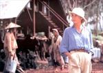 Khai mạc Liên hoan phim Việt Nam tại Pháp