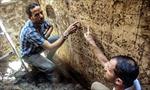 Ai Cập phát hiện nhà thờ đá cổ gần 4.000 năm