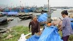 Theo dõi chặt diễn biến bão Rammasun