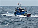 Trung Quốc thả 13 ngư dân Việt Nam
