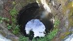Cây quăn lá tại Kon Tum: Chưa phát hiện giếng nước bị nhiễm độc