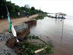 Sạt lở đất ảnh hưởng hàng chục hộ dân Đạ Huoai, Lâm Đồng