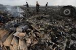 Mỹ: Máy bay Malaysia bị bắn rơi bằng tên lửa đất đối không