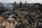 Thế giới kêu gọi điều tra quốc tế vụ MH17 bị bắn rơi