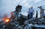 Vụ MH17: Đã phát hiện thi thể 121 nạn nhân
