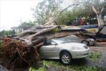 Philippines bị đe dọa bởi trận bão mới
