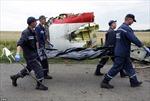 Tìm được 196 thi thể nạn nhân vụ máy bay MH17