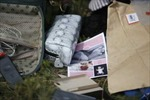Cảnh sát quốc tế được vào hiện trường rơi máy bay MH17