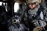 Hé lộ chi tiết cuộc tiêu diệt Bin Laden -  Kỳ 1: Xuất kích