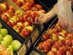 Nga có thể sớm cấm nhập khẩu thực phẩm từ EU và Mỹ
