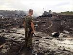 LHQ yêu cầu dừng ngay giao tranh ở nơi MH17 rơi
