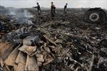 Chuyên gia quốc tế đến hiện trường máy bay MH17