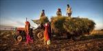 Tại sao Ấn Độ phủ quyết TFA của WTO?