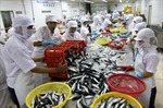 Thủy sản Việt Nam tiếp tục khẳng định vị thế trên trường quốc tế