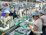 Việt Nam tăng mạnh xuất khẩu sang Brazil