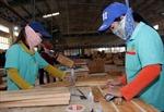 Ngành gỗ mở rộng thị trường, tăng trưởng nhanh