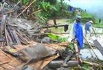 Lũ ống gây thiệt hại nặng tại Mèo Vạc, Hà Giang