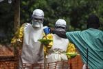 Hơn 930 người tử vong do dịch Ebola