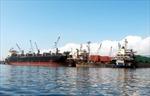 Có nên cổ phần hoá 100% cảng biển Quy Nhơn?