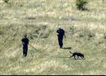 Hoãn tìm kiếm tại hiện trường MH17 vì lý do an toàn
