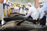 7 doanh nghiệp thủy sản được xuất khẩu trở lại Nga