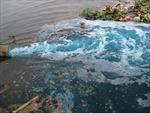 Người gây ô nhiễm phải trả tiền xử lý ô nhiễm
