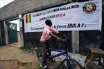 Các nước khẩn trương đối phó dịch Ebola
