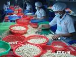 Việt Nam dự triển lãm thực phẩm quốc tế tại Hong Kong