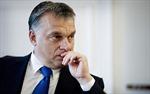 Trừng phạt Nga, EU 'tự bắn vào chân'