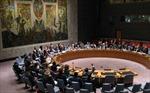 HĐBA không cho phép sử dụng vũ lực tại Iraq và Syria