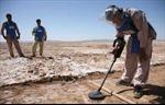Phiến quân bắt cóc 11 nhân viên dò mìn Afghanistan